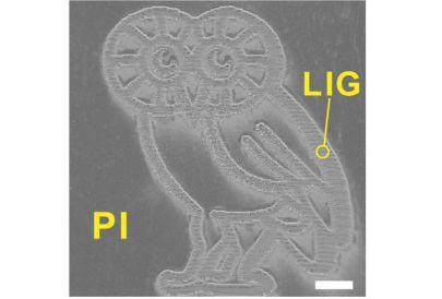 Полученное учеными изображение совы (длина белой линии отвечает одному миллиметру)