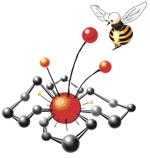 IV Всероссийская конференция по органической химии<br> XVIII Молодежная школа-конференция по органической химии