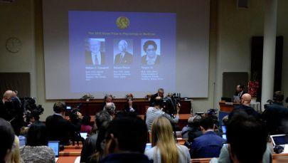 Лауреатами Нобелевской премии по медицине 2015 года стали ученые Уильям Кэмпбелл, Сатоши Омура и Ту Юю